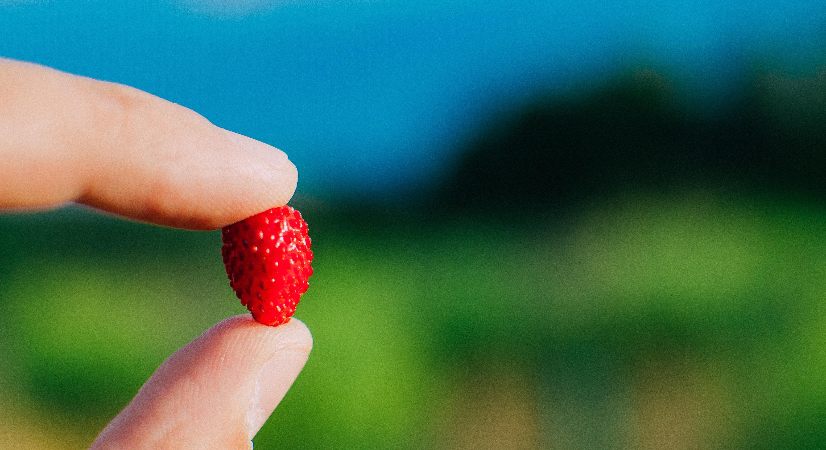 jak jeść świadomie i schudnąć